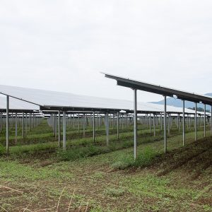 An agrivoltaic system such as the ones under study at the National Renewable Energy Laboratory (NREL)