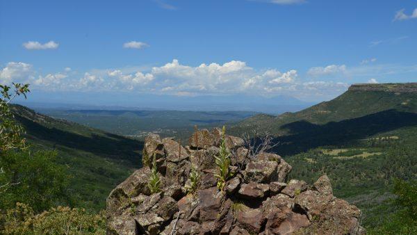 Fisher's Peak State Park